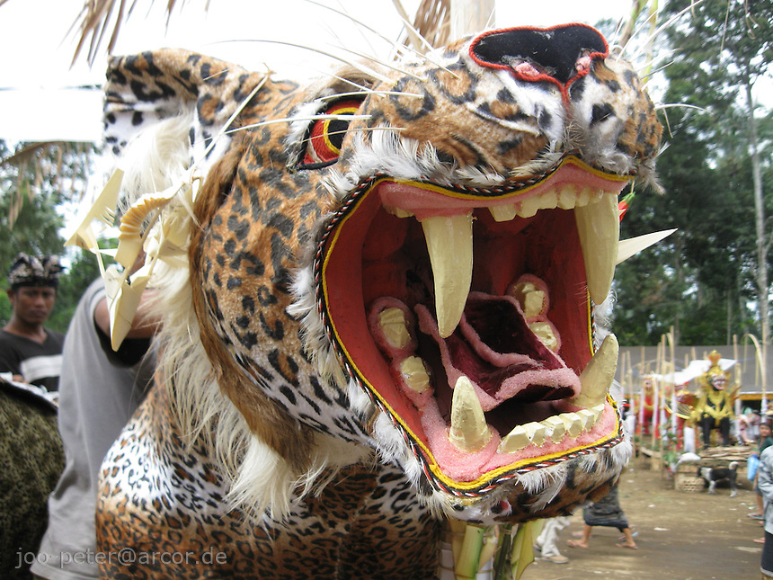 leopard head as part of a bigger thean life-size sculpture, to be burned soon after as carriage for the reminders of a passed family member in cremation ceremonies in Tampak Siring, village of horn carving art, central Bali, archipelago Indonesia, August 2009