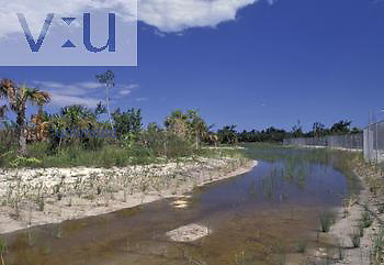 Drainage canal for maintaining groundwater levels and water supply for wetland habitats, Florida, USA.