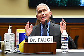 Dr. Anthony Fauci, Director of the National Institute for Allergy and Infectious Diseases, National Institutes of Health, testifies during a House Energy and Commerce Committee hearing on the Trump Administration's Response to the COVID-19 Pandemic, on Capitol Hill in Washington, DC on Tuesday, June 23, 2020. <br /> Credit: Kevin Dietsch / Pool via CNP