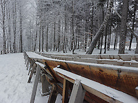 FOREST_LOCATION_90157