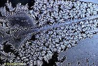 FO02-008b  Frost on window pane