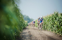 Tim De Troyer (BEL/Wanty-Groupe Gobert) in the infamous cornfield section<br /> <br /> 90th Schaal Sels 2015