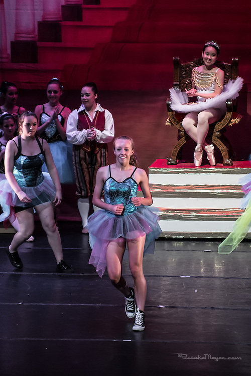 "Saturday Evening Performance ""Cinderella"", the 2014 Annual Recital by the Cary Ballet Conservatory."
