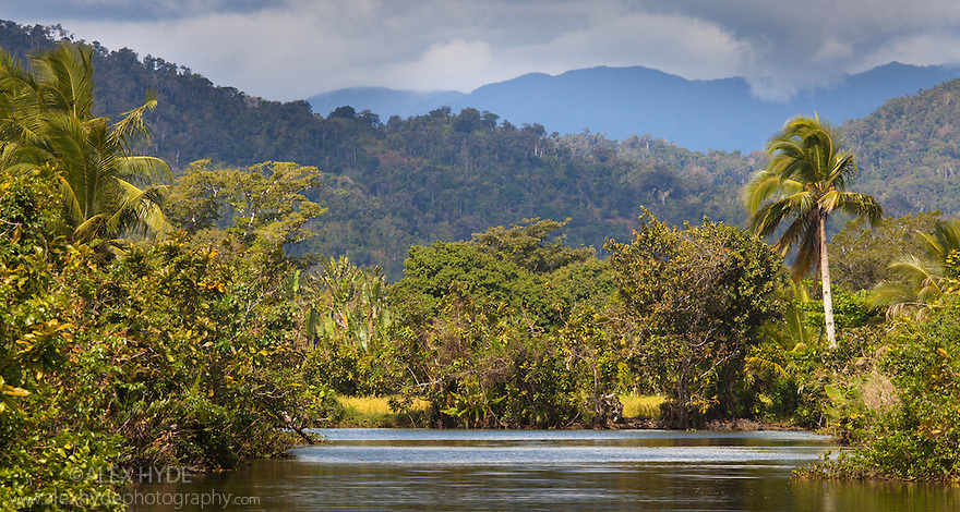 River running through rainforest, Maroantsetra, Northeast Madagascar.