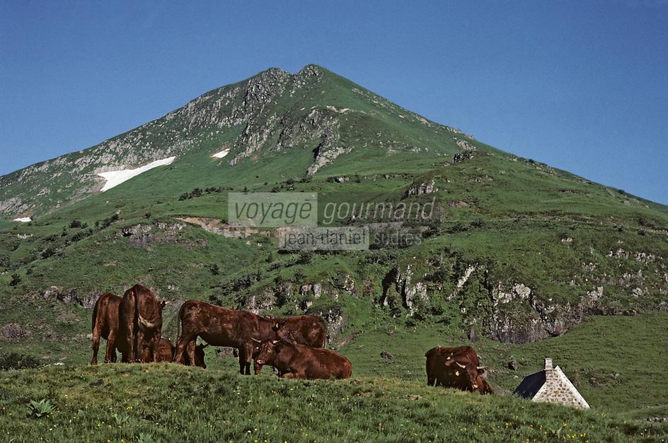 Europe/France/Auvergne/15/Cantal/Parc Naturel Régional des Volcans: Le massif du Puy Mary (1787 mètres) et buron d'Eylac