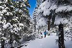 Woman hiking in snow at Lake Tahoe
