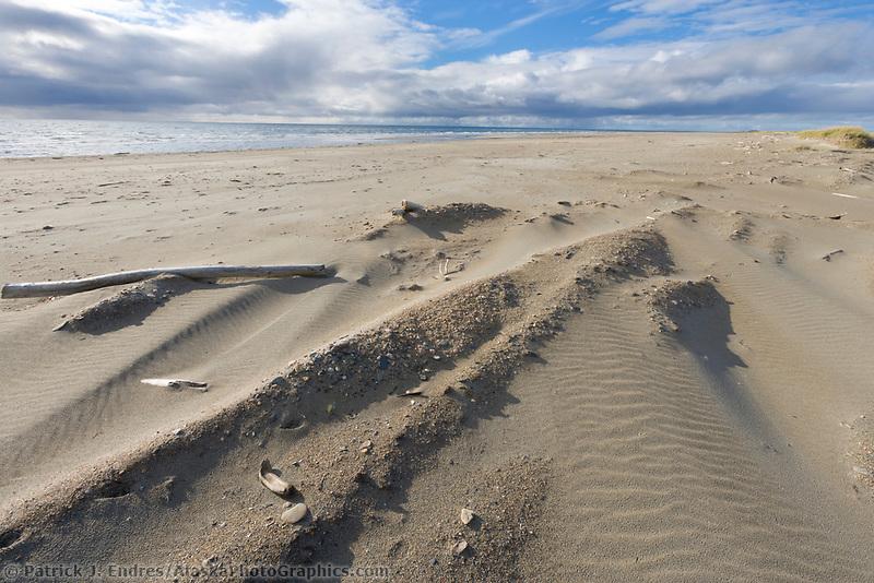 Sandy beach along the coast of Norton Sound, Bering Sea, along the Seward Peninsula, western Arctic, Alaska.