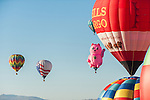 Hot air balloons fly over Rancho San Rafael during the Great Reno Balloon Races on Sept. 7, 2014 in Reno, Nev.<br /> (Photo by Kevin Clifford)