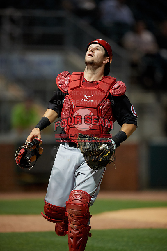 Chattanooga Lookouts catcher Chris Okey (19) tracks a foul ball popup during a Southern League game against the Birmingham Barons on May 1, 2019 at Regions Field in Birmingham, Alabama.  Chattanooga defeated Birmingham 5-0.  (Mike Janes/Four Seam Images)