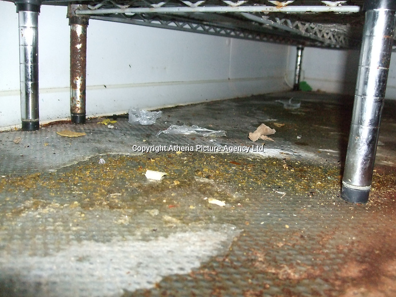 Pictured: Debris and mouse droppings found by officials at the Pizza Hut take away restaurant in St Helen's Road, Swansea, Wales, UK. <br /> Re: A Pizza Hut outlet has been issued with an  immediate closure notice for public protection after inspectors found evidence of a mouse infestation in the premises, Swansea Magistrates court has heard.<br /> Environmental health officers found mouse droppings throughout the kitchen area of the property, as well as in the damp cellar where the pizza delivery boxes were stored.<br /> The franchise owners have been fined £8,000.<br /> The court heard inspectors carried out a routine inspection of the pizza delivery and takeaway premises on St Helen's Road in Swansea on the13th of March 2018.<br /> Milton Keynes-based Sania PH Ltd, had previously pleaded guilty to six offences under the Food Hygiene Wales Regulations before district judge Neale Thomas.<br /> Charges against the owner of the company, Mubarak Ali, 44 of  Milton Keynes, were dropped.<br /> The court heard Mr Ali's businesses run a total of 18 Pizza Hut franchises - nine in Wales and nine in England.