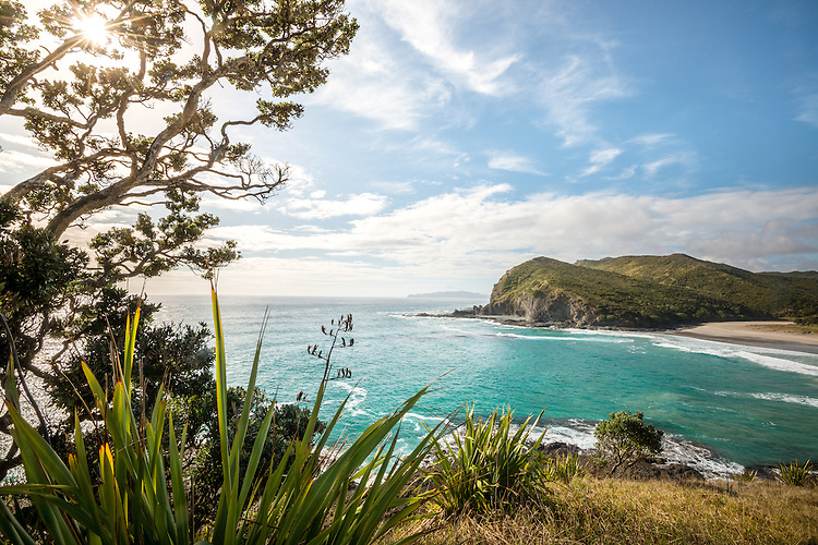 Blue sky day at Tapotupotu Bay, near Cape Reinga, New Zealand - stock images, canvas, fine art print