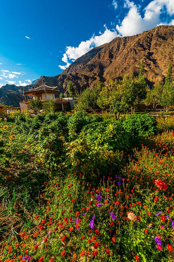 Uletopko Camp, Ladakh;  Jammu and Kashmir State, India.