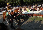 30 August 2008: Curlin is led from the paddock by Assistant Trainer Scott Blasi before the Woodward Stakes at Saratoga Race Course in Saratoga Springs, New York.