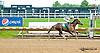 Ladida winning at Delaware Park on 6/12/13