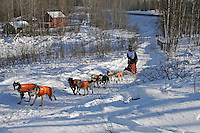 Saturday, February 24th, Knik, Alaska.  Jr. Iditarod musher Patrick Mackey on the trail shortly after leaving the Knik start
