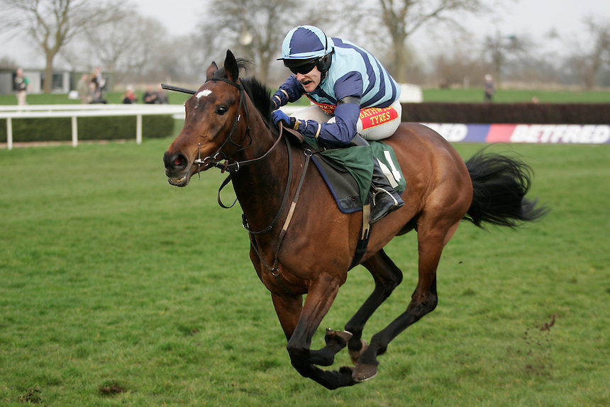 Molo ridden by Tom Scudamore wins the 17.05 The Betfred 'Double Delight' Mares' Standard Open National Hunt Flat Race (Class 6) <br /> <br /> Photo by Jack Phillips/CameraSport<br /> <br /> Horse Racing - National Hunt Racing - Uttoxeter Racecourse - Saturday 29th March 2014 - Uttoxeter<br /> <br /> &copy; CameraSport - 43 Linden Ave. Countesthorpe. Leicester. England. LE8 5PG - Tel: +44 (0) 116 277 4147 - admin@camerasport.com - www.camerasport.com