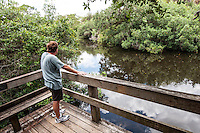 Hiking trails along the Estero River at Koreshan State Historic Site, a 200-acre park, Estero, Florida, USA. Photo by Debi Pittman Wilkey.