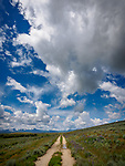 Dirt road through the Big Hole Valley, Montana, big skies full of clouds