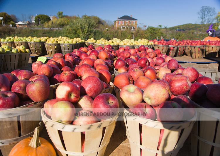 Locally grown apples are on sale near Harper's Ferry, Virginia.