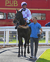 Winner of The George Smith Horseboxes British EBF Maiden Stakes  Dark Optimist ridden by John Egan and trained by David Evans  is led into the Winners Enclosure during Evening Racing at Salisbury Racecourse on 25th May 2019