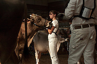 """Justine Williamson, 14,  prepares to present her dairy cow, """"Moolan"""" to judges during the New York State Fair youth dairy judging contest. Williamson said that despite her best efforts, Moolan took last place at the showing because of a bum leg. (Photo by James R. Evans)"""