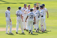 Sam Cook of Essex celebrates with his team mates after taking the wicket of Johnny Bairstow during Essex CCC vs Yorkshire CCC, Specsavers County Championship Division 1 Cricket at The Cloudfm County Ground on 4th May 2018