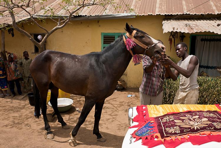 Danda is being prepared for his first ride in Djougou. Moussa Atta makes his horse run and sweat before washing him thoroughly.<br />  <br /> Danda est pr&eacute;par&eacute; pour sa premi&egrave;re sortie &agrave; Djougou. Moussa Atta fait courrir son cheval pour le faire transpirer avant de le laver rigoureusement.