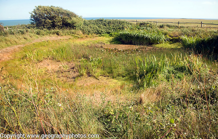 Dried up dew pond on chalk rock of Seaford Head, East Sussex, England