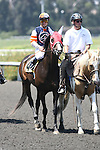 27 June 2009:  Hot n' Dusty and Alex Solis in the Vanity Handicap (GI) at Hollywood Park in Inglewood, CA