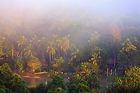Karawari River; sunrise over the jungle and Karawari River seen from the terrace of Karawari Lodge.
