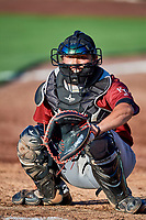Wyatt Mascarella (25) of the Idaho Falls Chukars during the game against the Ogden Raptors at Lindquist Field on August 9, 2019 in Ogden, Utah. The Raptors defeated the Chukars 8-3. (Stephen Smith/Four Seam Images)