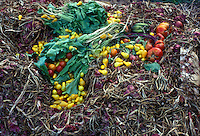 Adding to the compost heap with new raw materials to begin decaying decomposition process in the garden.