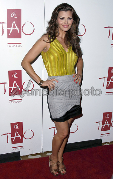 10 May 2008 - Las Vegas, Nevada - Ali Landry. Ali Landry hosts The Hot Mom Party held at Tao Night Club at the Venetian Hotel and Casino. Photo Credit: MJT/AdMedia