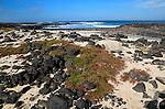 Beach rocks and white sand, near Majanicho on north coast of Fuerteventura, Canary Islands, Spain