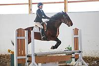 OCEA Horse Show - January 27, 2019