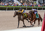 February 29, 2020: #4 With Verve with jockey Edgar Prado  on board, wins the Hutcheson Stakes, on February 29th, 2020 at Gulfstream Park in Hallandale Beach, Florida. LizLamont/Eclipse Sportswire/CSM
