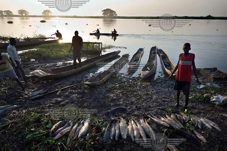 Fish being sold on the banks of the Sobat river in South Sudan.