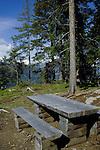 Rustic picnic bench and seats. Imst district, Tyrol, Tirol, Austria.