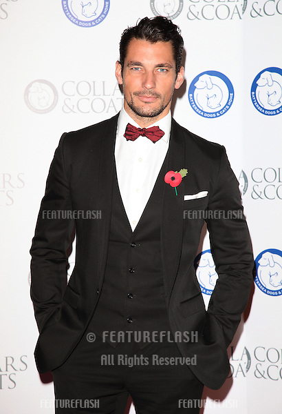 David Gandy arriving for the Collars And Coats Ball, at Battersea Evolution, London. 08/11/2012 Picture by: Alexandra Glen / Featureflash