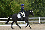 Stapleford Abbotts. United Kingdom. 06 October 2019. Arena 1. Essex Riding Club Winter Dressage & Combined Training Qualifiers. Brook Farm training centre. Essex. UK. Credit Garry Bowden/Sportinpictures.~ 06/10/2019.  MANDATORY Credit Garry Bowden/SIP photo agency - NO UNAUTHORISED USE - 07837 394578