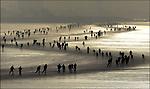 """13/12-FRIESLAND- Schaatstoertocht """"Kop van de Afsluitdijk"""" op het IJsselmeer."""