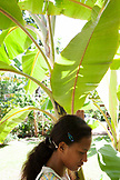 FRENCH POLYNESIA, Moorea. Portrait of girl standing under banana leaves.
