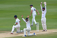 A big appeal from the Essex players for the wicket of Sam Hain during Essex CCC vs Warwickshire CCC, Specsavers County Championship Division 1 Cricket at The Cloudfm County Ground on 22nd June 2017