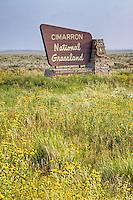 The Cimarron National Grassland in Western Kandas.