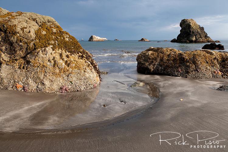 Low tide at Rainbow Rock Beach in Brookings, Oregon