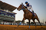 RIYADH,SAUDI ARABIA-FEB 28: Paris,ridden by Mike Smith,wins the 3rd leg of International Jockeys Challenge at King Abdulaziz Racetrack on February 28,2020 in Riyadh,Saudi Arabia. Kaz Ishida/Eclipse Sportswire/CSM