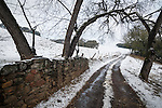 A rare late autumn snowfall covers the Sierra Foothill town of Jackson, Calif.<br /> <br /> Country road with snow