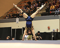 2010 Men's NCAA Gymnastics Individual Finals Mich