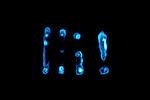Bioluminescent Bacteria (Vibrio fischeri). LM