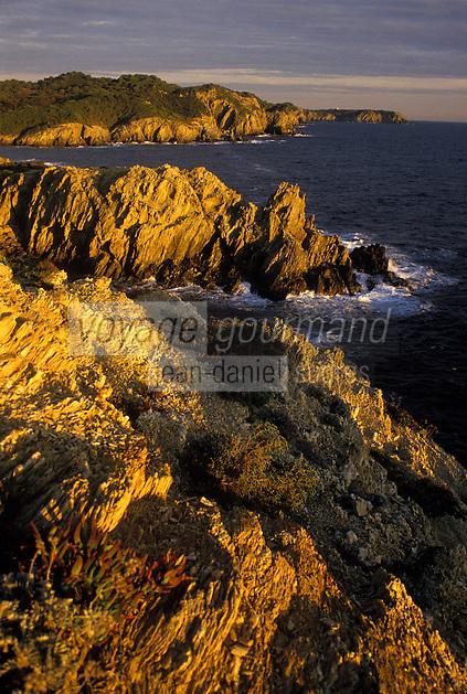 Europe/France/Provence-Alpes-Côte d'Azur/83/Var/Ile de Porquerolles: Côte rocheuse